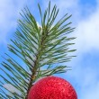 Christmas tree against blue sky — Stock Photo