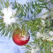 Christmas tree under snow — Stockfoto