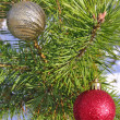 Stock Photo: Christmas balls on the tree
