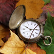Stock Photo: Autumn time