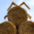 Sheaf of hay - Stock Photo