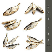Dry fish set — Stock Photo