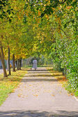 Autumn alley — Stock Photo