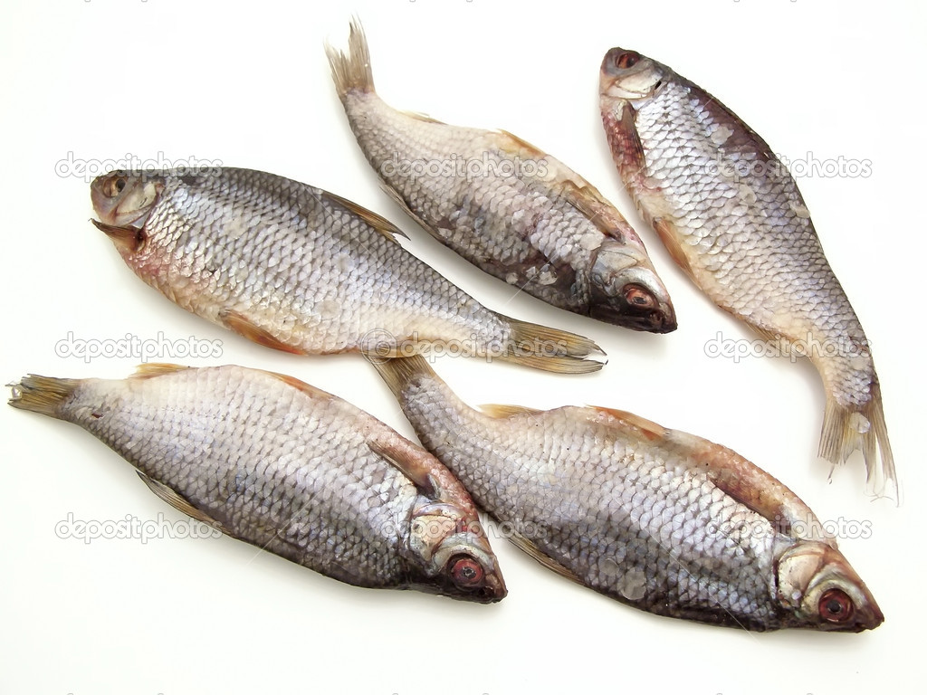 Five dry fishes on the white background — Stock Photo #2953402