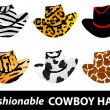 Cowboy hats — Stock Vector