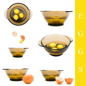 Egg and bowl — Stock Photo