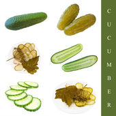 Pickled and green cucumbers — Stock Photo