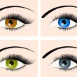 Stock Vector: Eyes