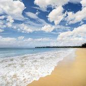 沙滩 — 图库照片