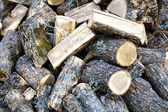 Oak fire wood — Stock Photo