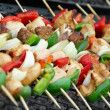 Shashlik - Stock Photo