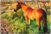 Illustration, horse — Stok fotoğraf