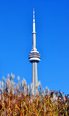 CANADIAN TOWER IN TORONTO — Stock Photo