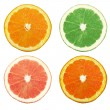 Colored oranges - Stock Photo