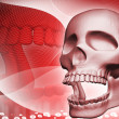 Digital illustration of skull in color background — Stock Photo #3559456
