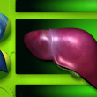 Highly quality of rendering  liver in color background - Stock Photo