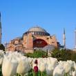 Haghia (Aya) Sophia — Stock Photo #2822984