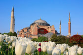 Haghia (Aya) Sophia — Stock Photo