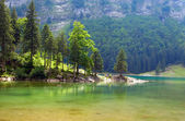 Seealpsee lake — Stock Photo