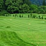 Golf course — Stock Photo #3161323