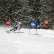 Royalty-Free Stock Photo: Giant Slalom in Elm