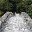 Stock Photo: Ancient stone bridge