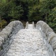 Ancient stone bridge — Stock Photo