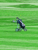 Golf trolley — Stock Photo