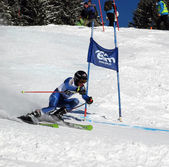 Giant Slalom in Elm — Stock Photo