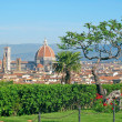 Florence — Stock Photo #3370002