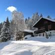 Stock Photo: Winter holiday house