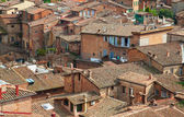 Roofs of old Siena — Stock Photo