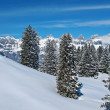 Winter in the alps - Stock fotografie