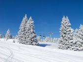 Pente de ski — Photo