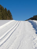 Cross-country ski track — ストック写真