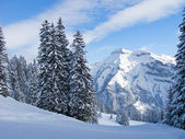 Winter in the alps — Stockfoto
