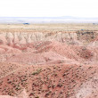 Stock Photo: Petrified Desert