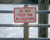 Do Not Feed the alligators — Stock Photo