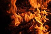 Campfire Embers — Stock Photo