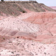 Stock Photo: Petrified Forest