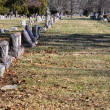 Cemetery Headstone Background — Stock Photo