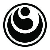 Dövüş sanatları - karate shinkyokushinkai — Stok Vektör