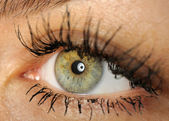 Female eye close up. — Stock Photo