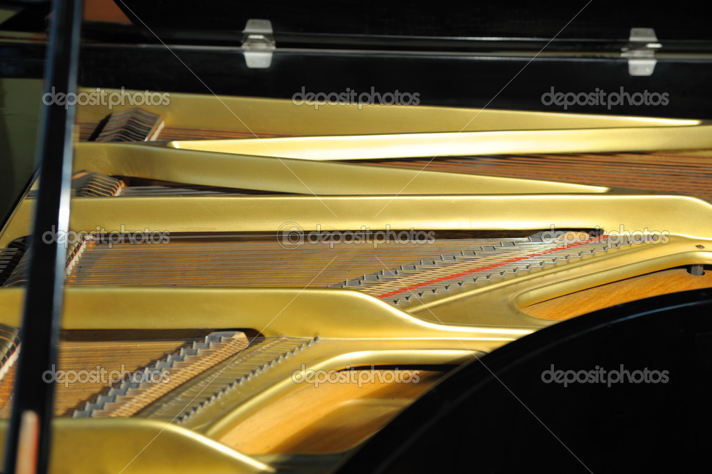 Inside grand piano. A photo close up, natural color  Stock Photo #3494637