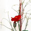 Stock Photo: Red Flower Art - Poppy