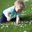 Small, happy blond boy in a green field — Stock Photo