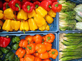 Colorful bell peppers and spring onions — Stock Photo