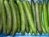Many Cucumbers — Stock Photo