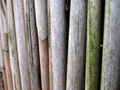 Bamboo or reed mat — Stock Photo