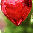 A red heart — Stock Photo